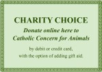Charity Choice 2