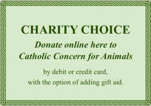 Charity Choice 2