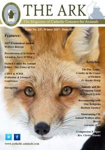 Front Page - Ark 237