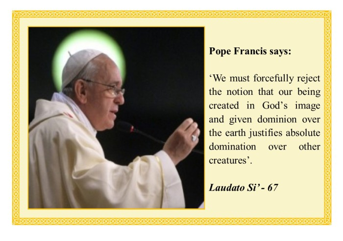 Pope Francis Quote LS67