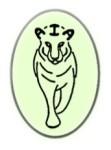 AIA Logo Green