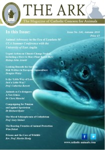 Front Page - Ark 240